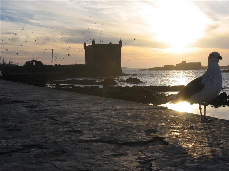Essaouira harbor fortifications
