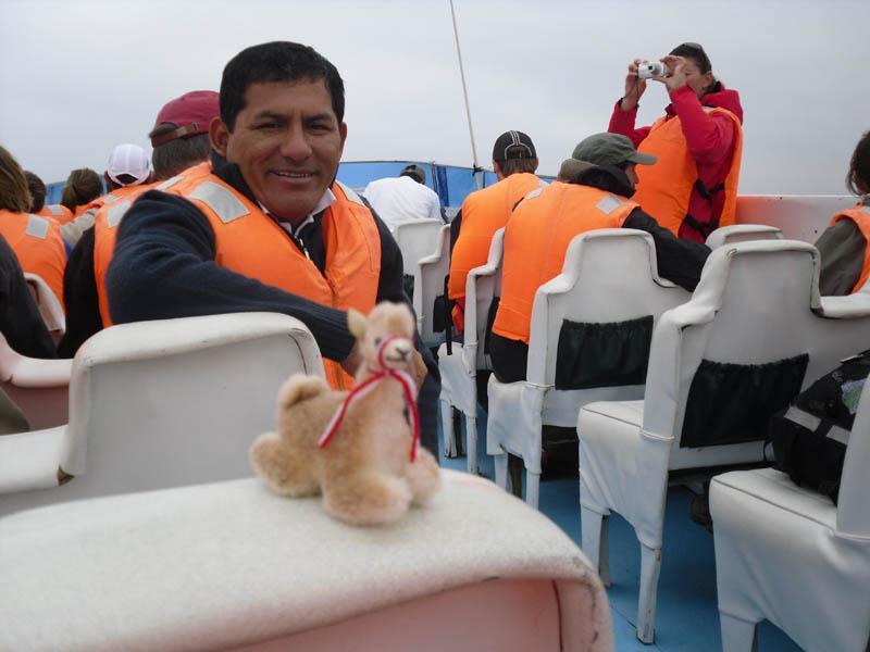 Llamas marinas
