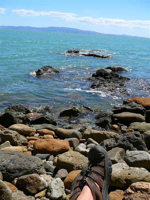 Photo from Tapu, New Zealand