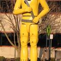 Crash Test Dummy At the DMV