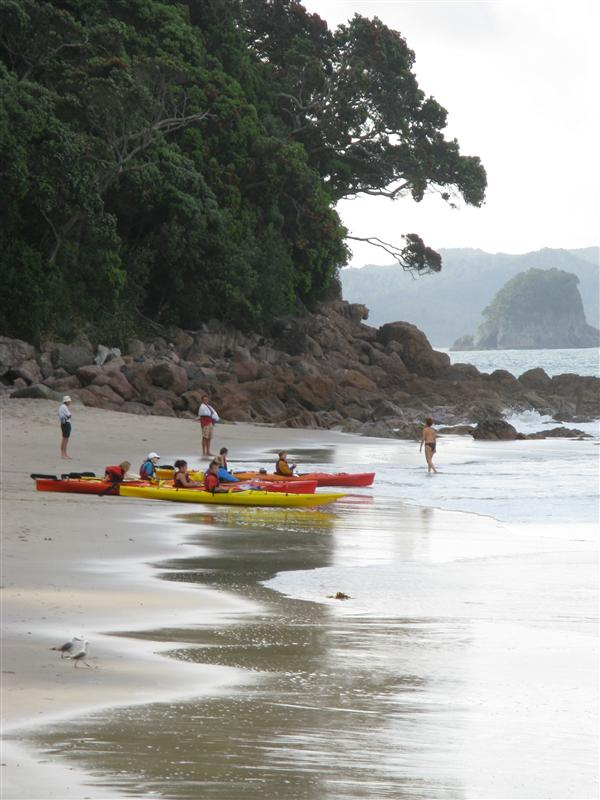 Watching the kayaks go out at Cathedral Cove