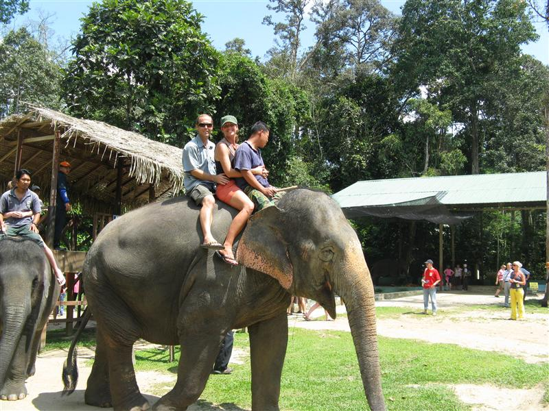 1st elephant ride- Kuala Gandah, Malaysia