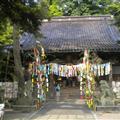 Decorated shrine near Kenrokuen