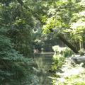 Outer shrine - Pond