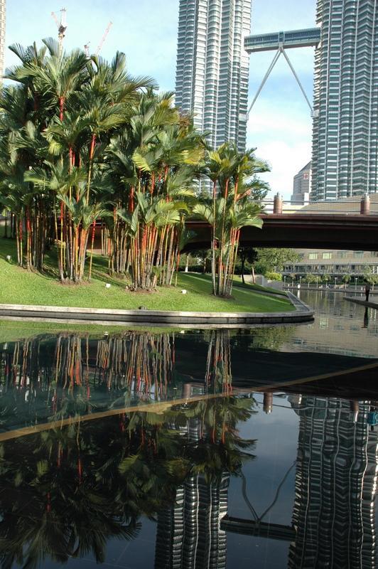 Twin Towers & Bamboo