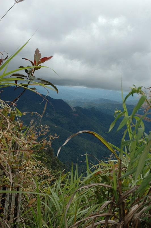 Borneo Higlands