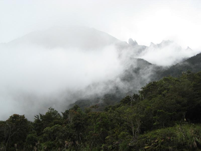 Mount Kinabalu in the mist