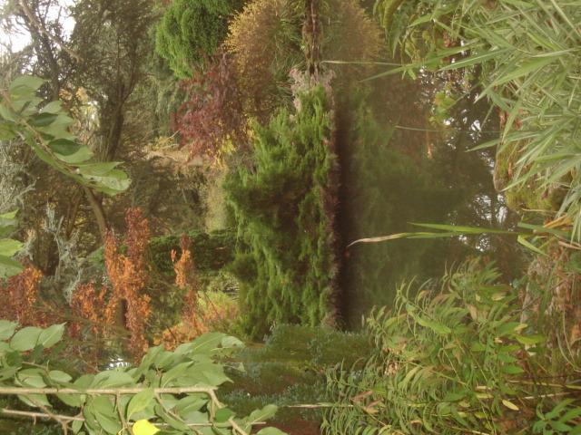 Secret Garden at Blenheim
