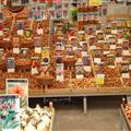 The wonderful world of bulbs!