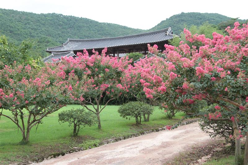 Photo from Andong, South Korea