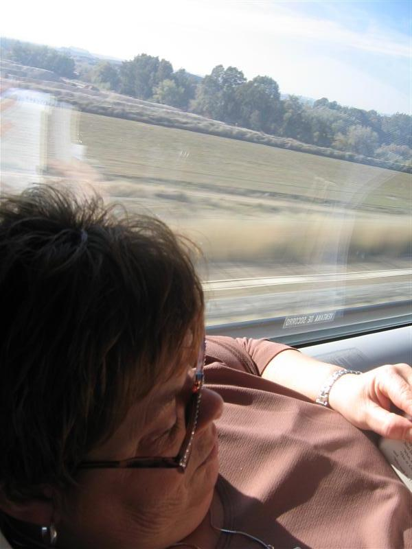 Mom reading on the train to Sevilla from Madrid