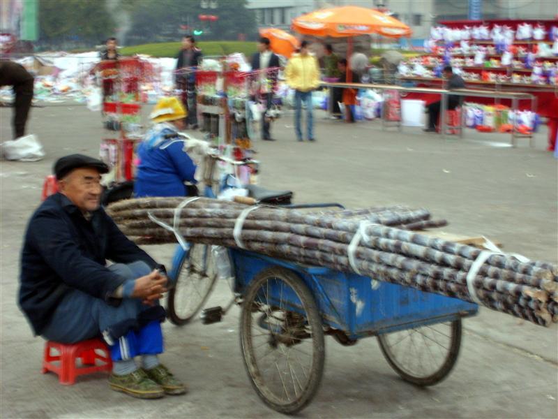 Selling Bamboo shoots