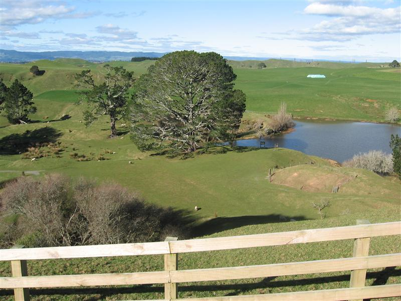 The tree, lake and field that featured in Bilbo's birthday party