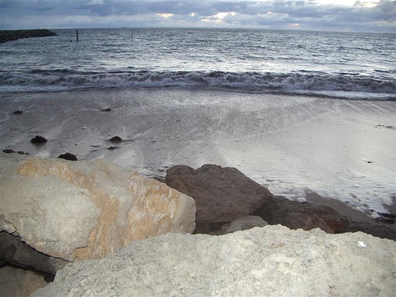 A beach in Fremantle