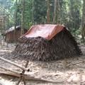 A native's hut in the jungle