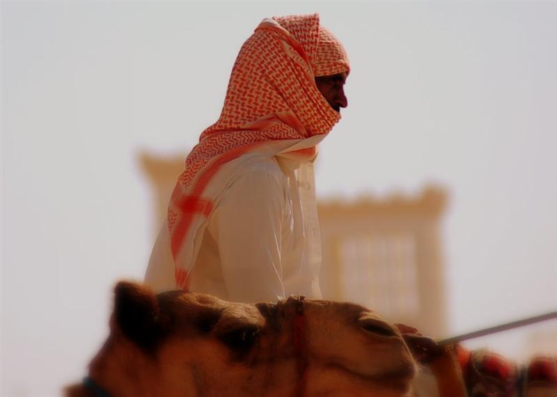 Working as Camel Jockey