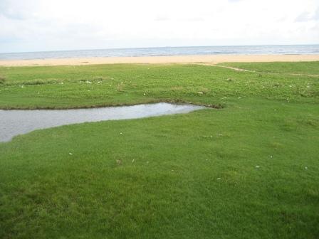 Elliots Beach ... wenn doch der ganze Müll und Gestank nicht wäre