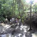 Floral baths prior to ayahuasca ceremonies