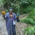 Plant spirit shamanism - Shaman Artiduro, from my book Plant Spirit Shamanism