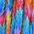 Colorful origami cranes, symbol of peace