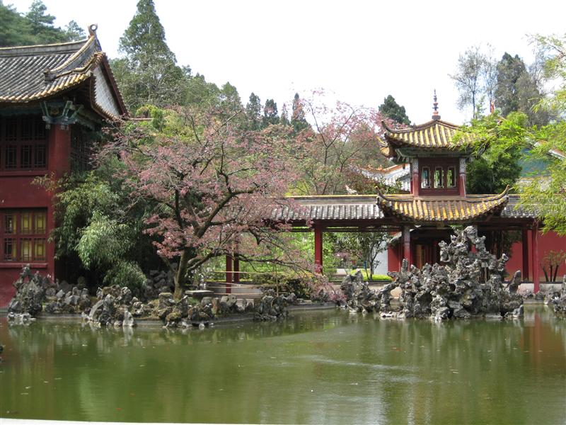 Cool temple gardens