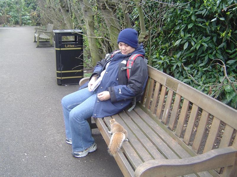 Squrriel in Kensington Garden trying to sponge off me!