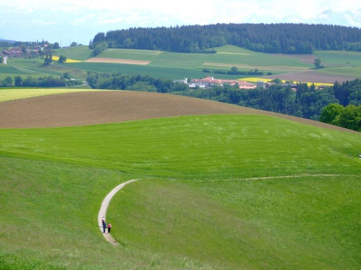 view of fields at top of Gurten