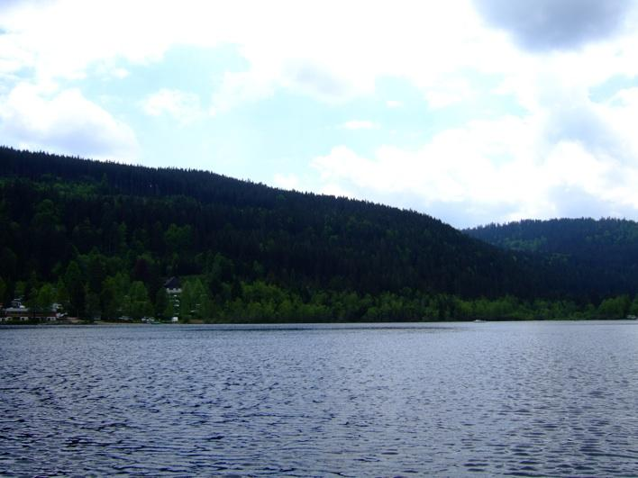 view of black forest fr Titisee