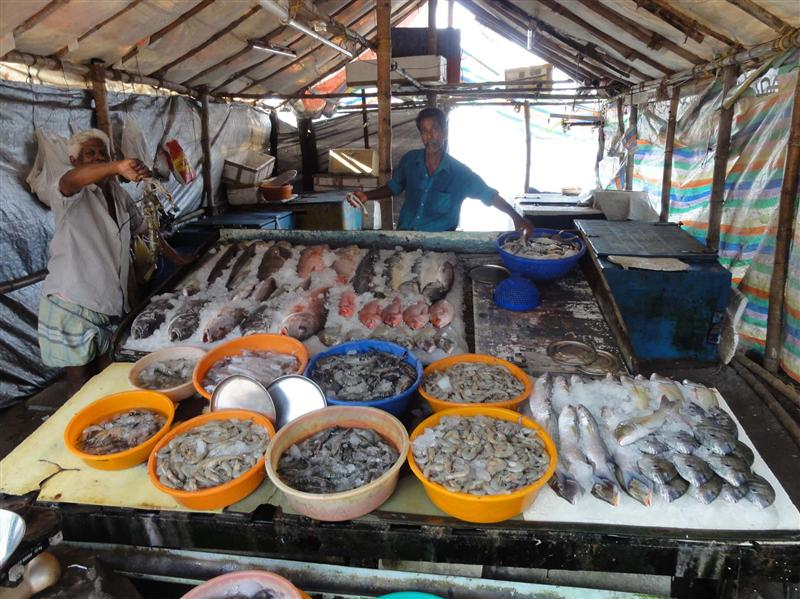 The array of fish to choose from. And eat ;-)