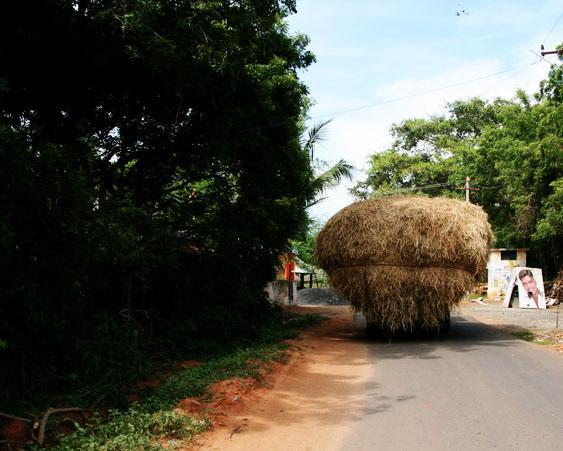 Photo from Pondicherry, India