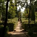 Walkway in BoscoDellaRagnia
