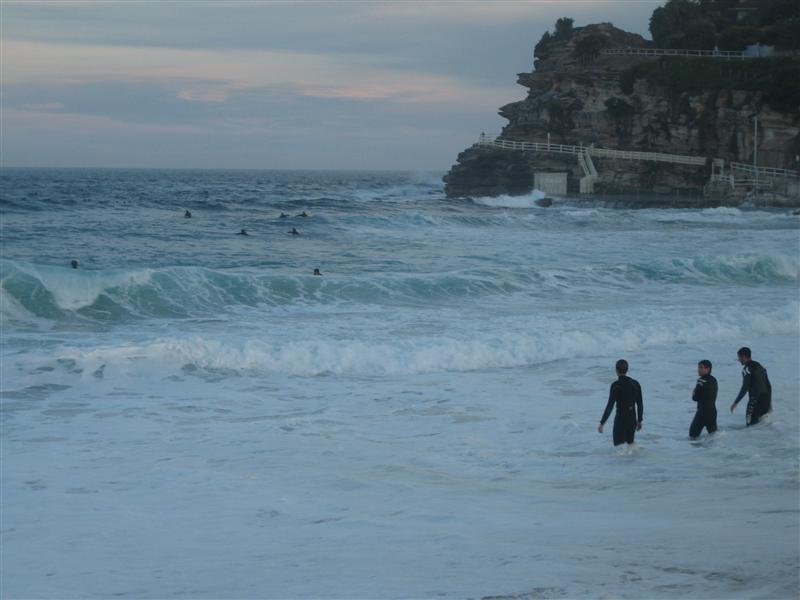 Surfers at Bronte