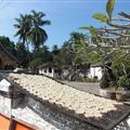 Secando el arroz en la puerta del templo