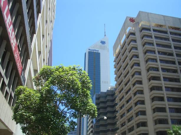 The CBD