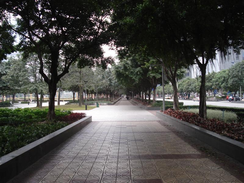 Park next to Citic Centre