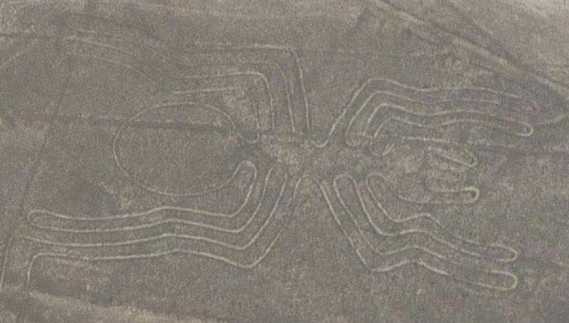 Just spider