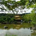 Kinkaku-ji. OK, it's quite pretty.