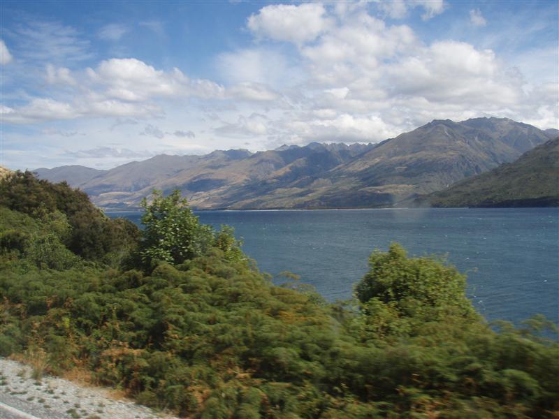 Otago's Dingle Burn Range