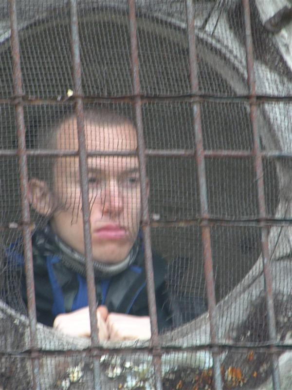 ola the prisoner