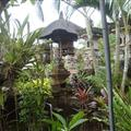 Guesthouse in Pedang Tegal