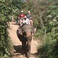 me and Yvonne on an elephant
