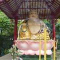 Little Big Buddha