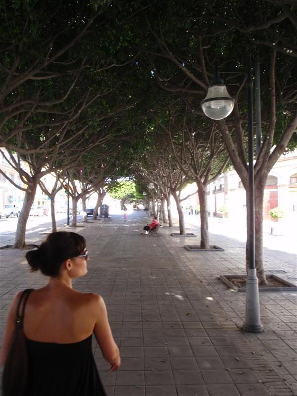 A side street in Malaga