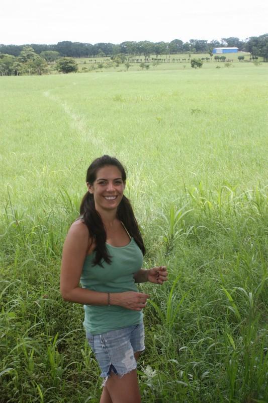 Hills between Montezuma, Cobano and Santa Teresa