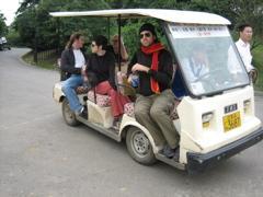 Golf Cart through park