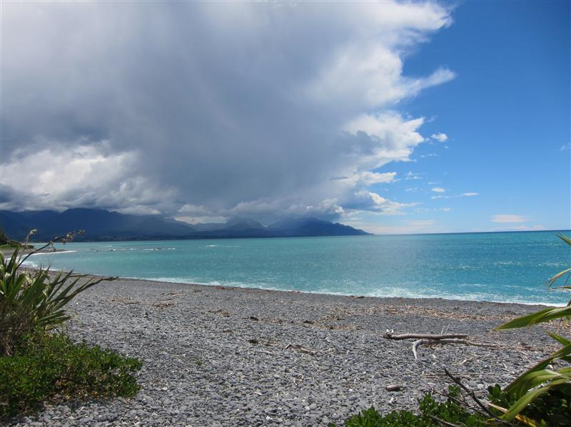 Photo from Kaikoura, New Zealand