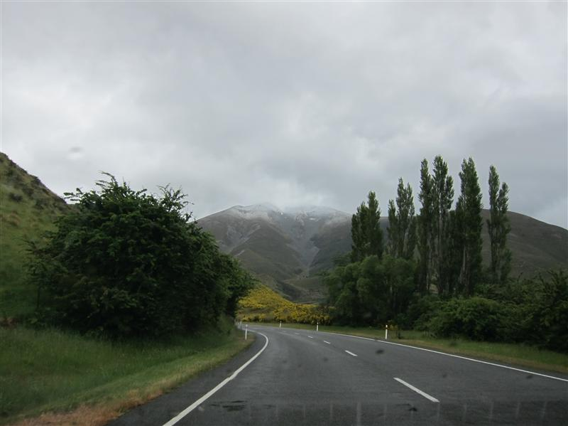 Photo from Craigieburn, New Zealand