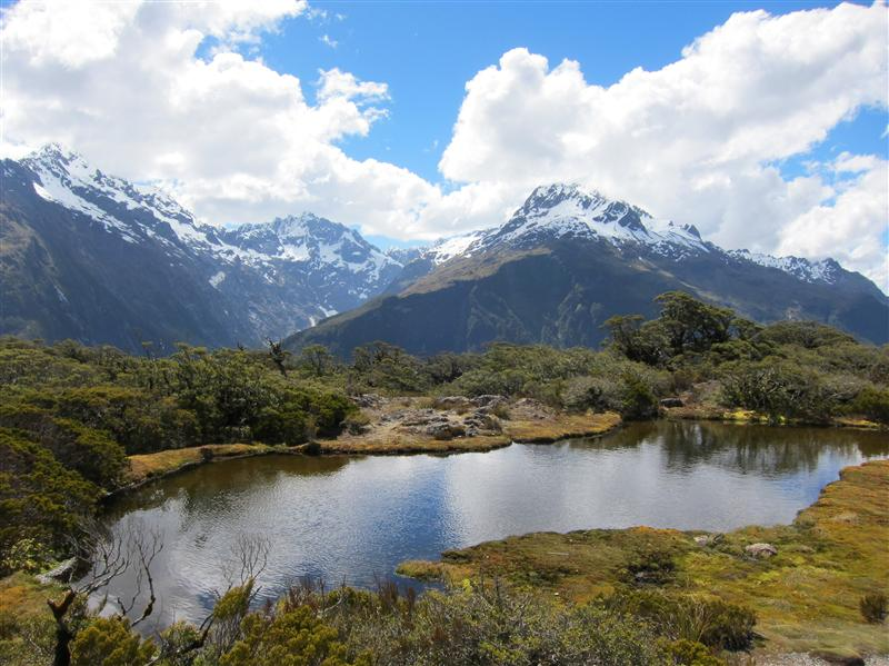 Photo from Hollyford, New Zealand