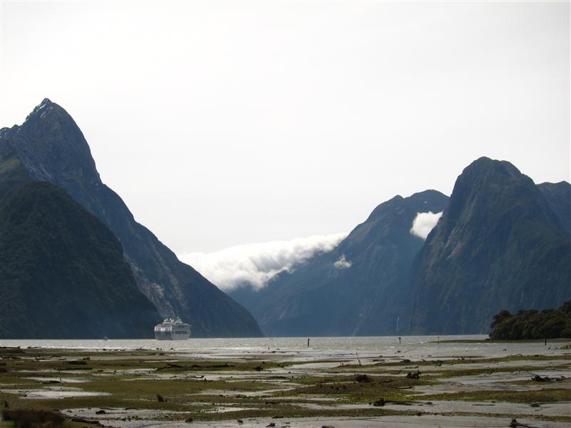 Milford Sound from the shore