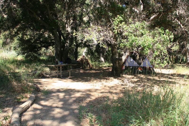 Campsite at Mono